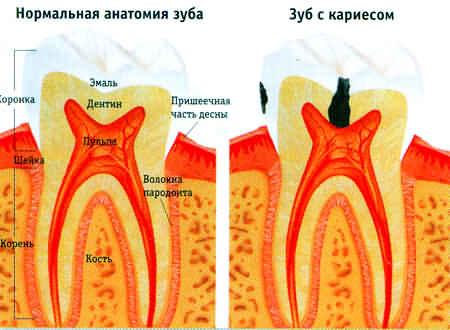стоматология, стоматологическая клиника, стоматолог, стоматология москва, стоматологические клиники москвы, отбеливание, протезирование, отбеливание зубов, имплантация, лечение зубов, стоматологические клиники москва, керамика, протезирование зубов, имплантация зубов, стоматологические услуги, исправление прикуса, стоматология в москве, пульпит, зубные протезы, вакансии, вакансии для стоматологов, работа, каталог сайтов, обмен ссылками, фотохудожник Олег Каплан